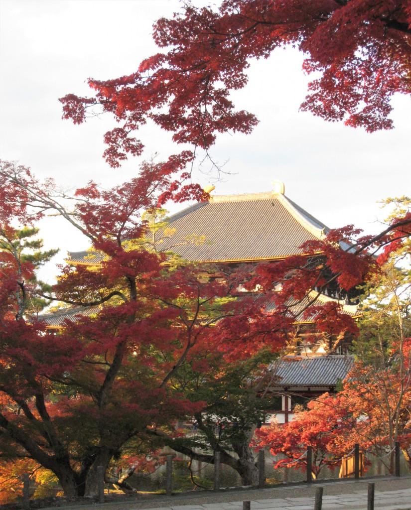向こうに見えるのが東大寺。修学旅行生たちが続々と訪れていました