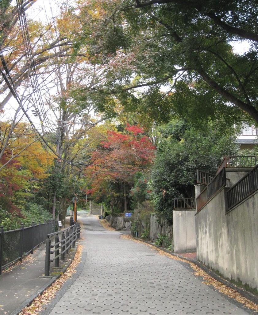 最寄駅のJR山崎から美術館に向かう道。自然にあふれた