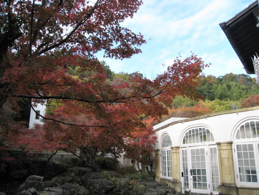 右に見える白亜の建物は、2012年に完成した「山手館」。安藤忠雄氏が設計